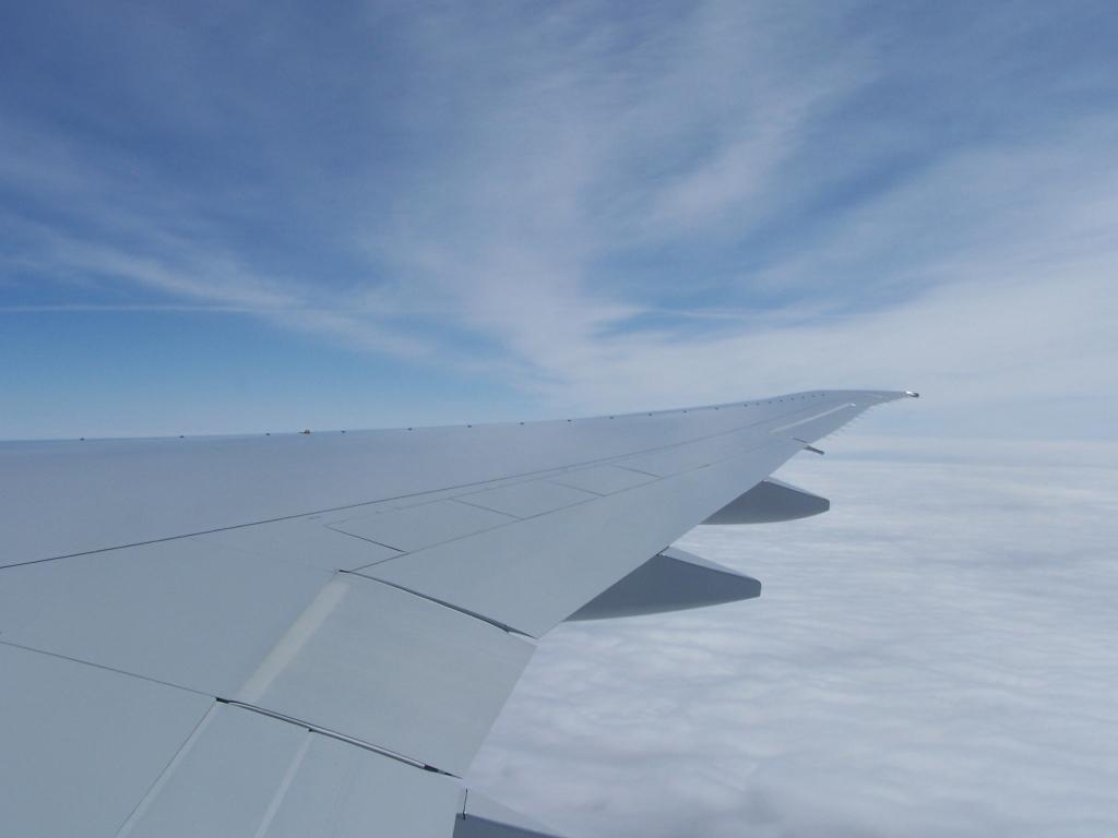 http://www.simlivery.com/img/AC77W/wing1.jpg